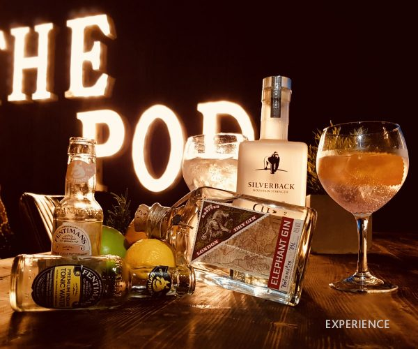 The Pod Gin Experience